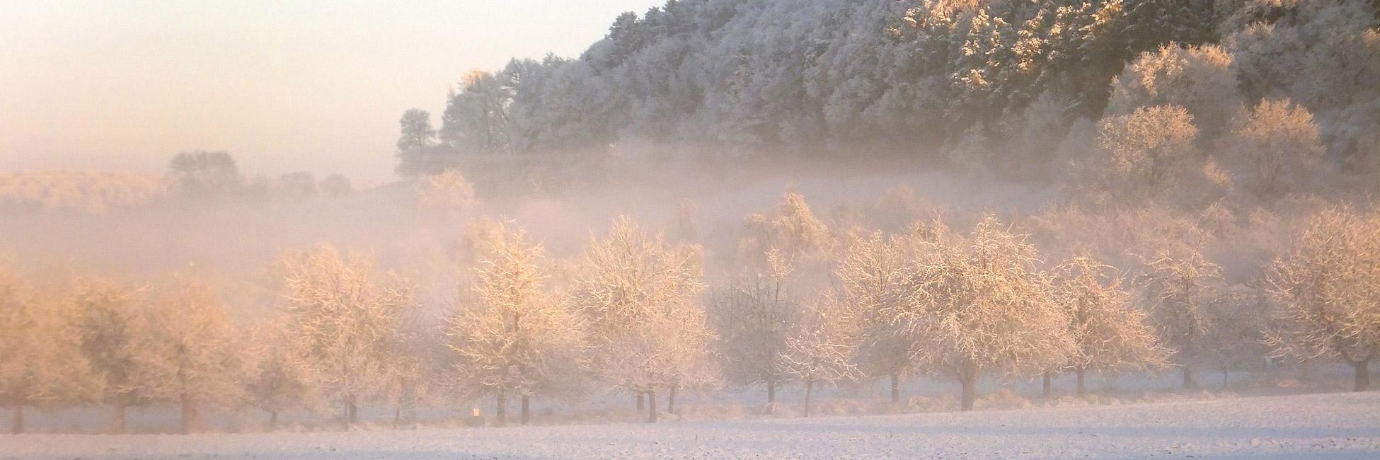 Winterzauber Bodensee